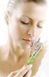 Woman and Lavender